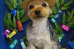 『この帽子良いね!』